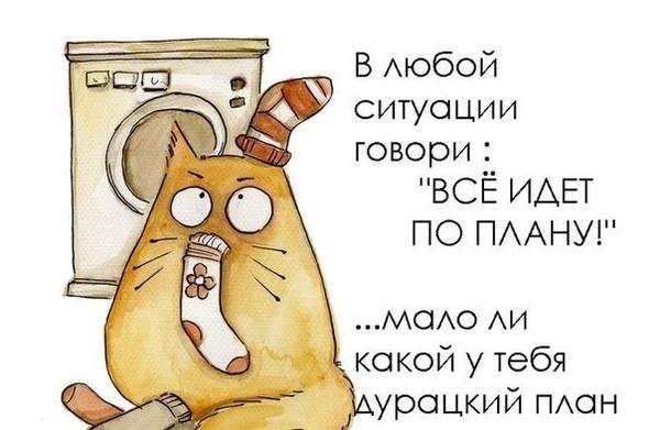 У Порошенко есть план по освобождению всех украинских политзаключенных в РФ и в оккупированном Крыму, - адвокат Савченко - Цензор.НЕТ 5508