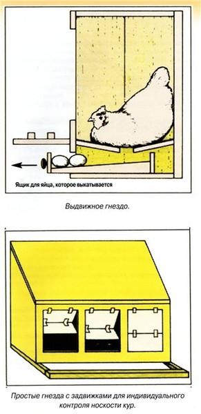 """,""www.pticevody.ru"