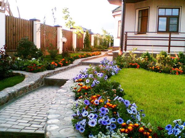Какие бордюрные цветы можно посадить