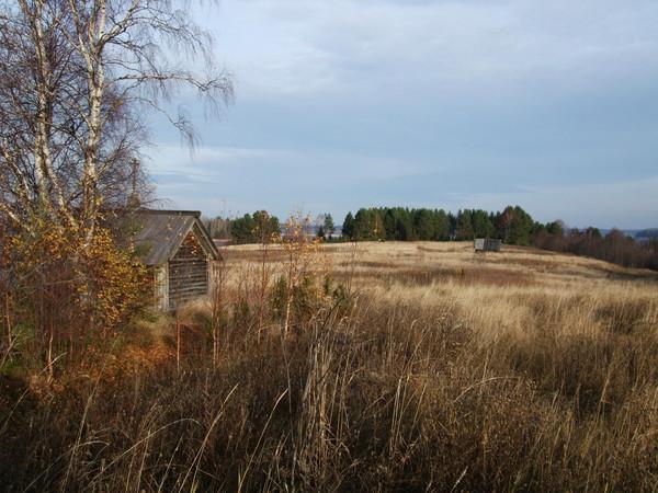 http://content.foto.mail.ru/bk/n-galya/1396/i-1711.jpg