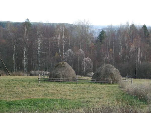http://content.foto.mail.ru/bk/n-galya/1396/i-1741.jpg