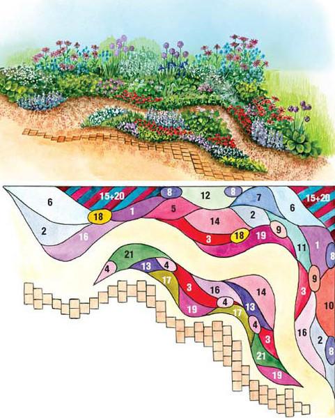 Схемы клумб из многолетних цветов
