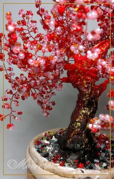 Бисерное дерево красное. Ствол