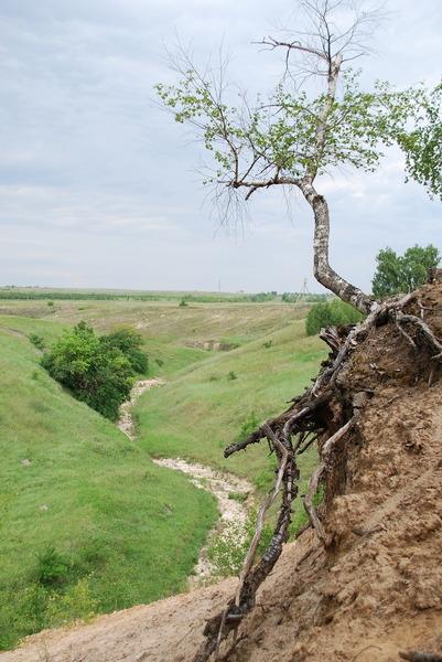 http://content.foto.mail.ru/bk/serdzhio/4925/i-4960.jpg