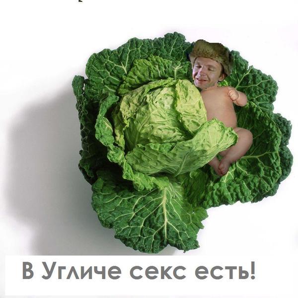 http://content.foto.mail.ru/bk/voenkniga/1498/i-1554.jpg