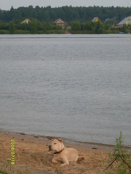 http://content.foto.mail.ru/bk/voenkniga/478/i-1625.jpg