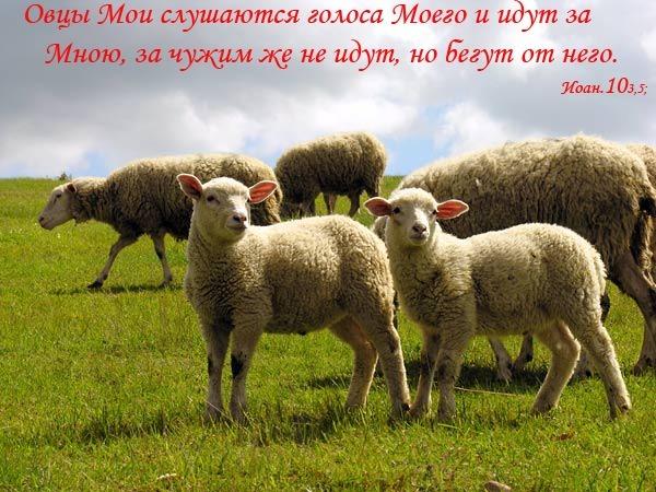 http://content.foto.mail.ru/community/christian_christ/114/i-297.jpg