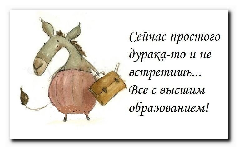 http://content.foto.mail.ru/community/funny_cards/_groupsphoto/h-1377.jpg