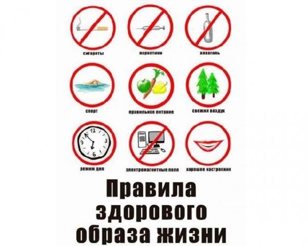 правила здорового образа жизни для школьников