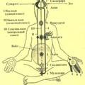 Как видно из схемы, у человека есть три основных энергетических канала: левый (Ида), правый (Пингала), центральный...