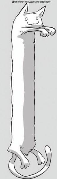 Как сделать длинное фото на аву в контакте