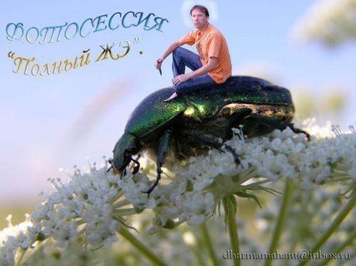 http://content.foto.mail.ru/inbox/dharmamahant/570/i-586.jpg