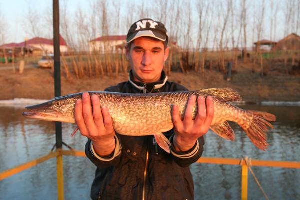 село сероглазовка рыбалка