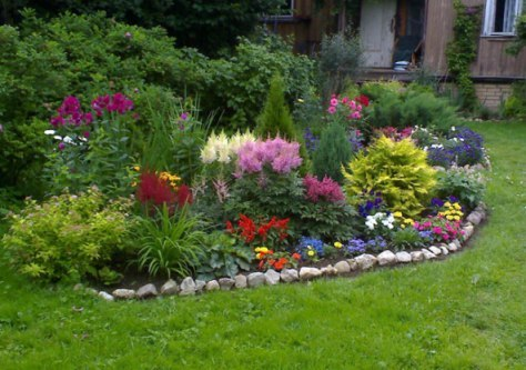 Названия цветов — многолетние цветы