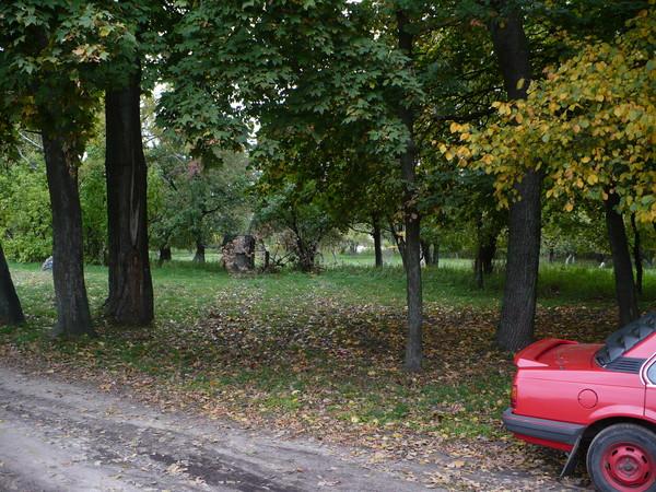 Усадьба Березовских в Старом Белоусе I-6220