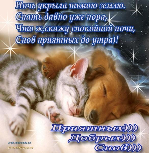 http://content.foto.mail.ru/inbox/maksimova-49/_blogs/i-3262.jpg