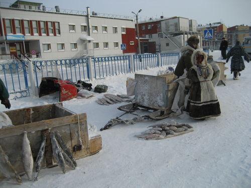 Фото  Местный рыбный бизнес .