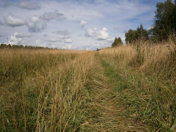 Залесье 2012 - Страница 2 I-271