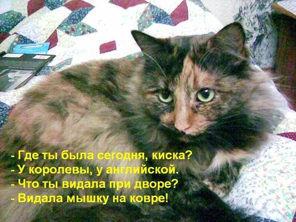 http://content.foto.mail.ru/list/2land2/212/i-443.jpg