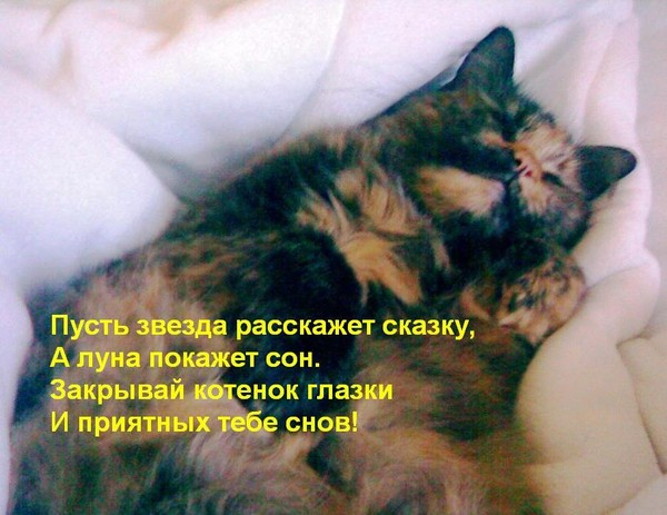http://content.foto.mail.ru/list/2land2/_myphoto/i-441.jpg