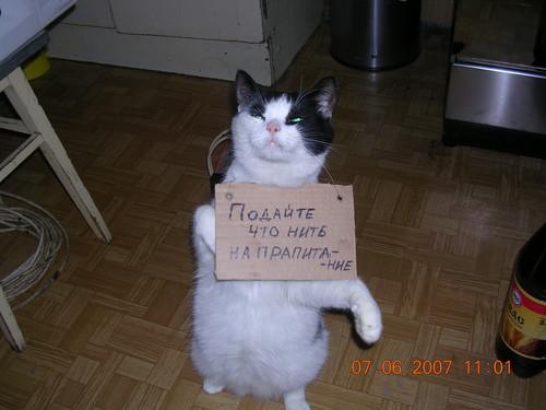 http://content.foto.mail.ru/list/ckb/604/i-1944.jpg