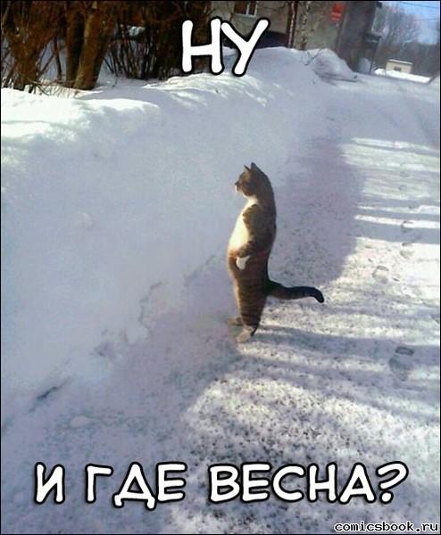 http://content.foto.mail.ru/list/karambaev/109/i-701.jpg