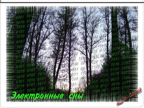Электронные сны средь безбрежных небес.<br /> В них трехмерная степь, неоновый лес,<br /> Плетения слов между адресных строк,<br /> И ты будто путник в сети дорог.<br /> _*\_*_/*_<br /> Не слышно шагов в ссылках страниц,<br /> Не видно парящих над облаком птиц.<br /> Но тихо ступив за границы сих снов,<br /> И мир обретает краски без слов.<br /> _*\_*_/*_<br /> Электронные грезы сознания часть.<br /> В них ты можешь взлететь или упасть.<br /> Но помни, чт там, за границей всего<br /> Кто-то другой тоже смотрит в окно...<br /> <br /> ©Amen Ur-Set, август 2008