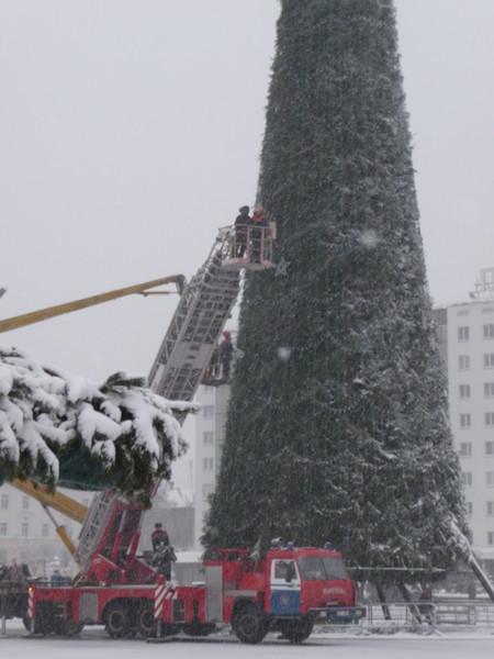 http://content.foto.mail.ru/list/kot_begemot_/vitebsk/i-669.jpg