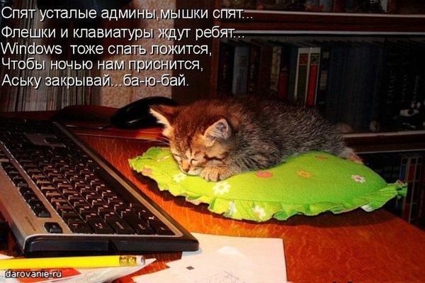 картинка mail ru знакомства