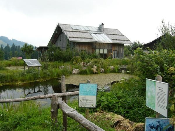 Травяной садик