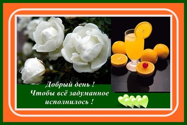 http://content.foto.mail.ru/list/vera-kira/4874/i-7856.jpg
