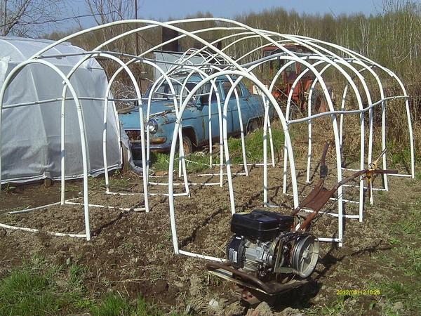 Вести с полей, садов и огородов-2012 - Страница 5 I-36