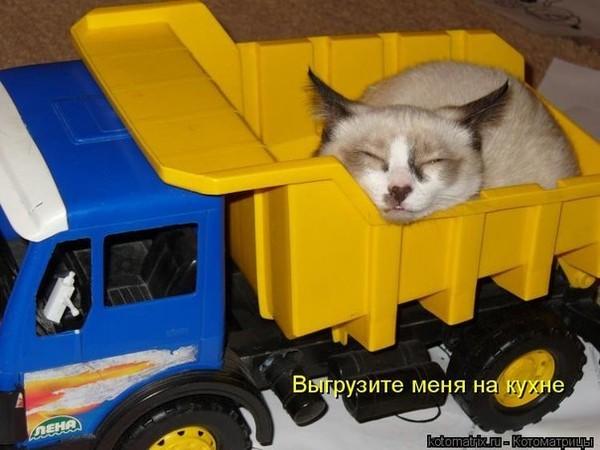 Праздники в казахстане день республики