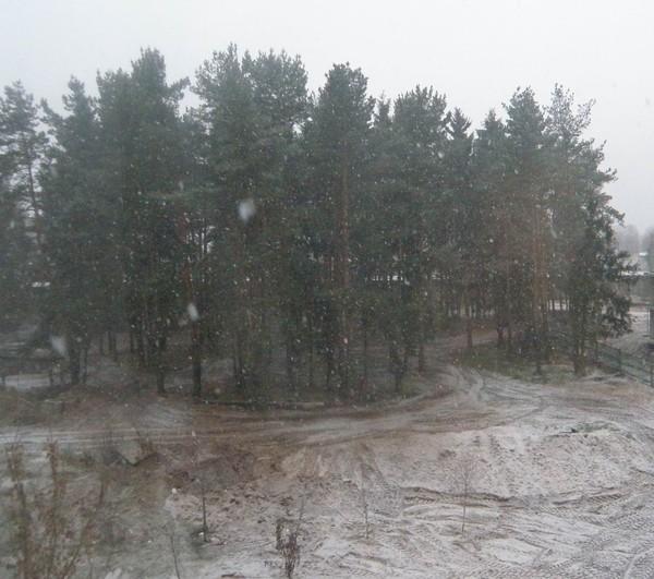 Снегопад, Минск, 31 декабря 2011