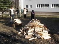 Хождение по углям, подготовка дров