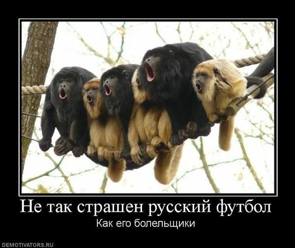 Фото Да уж....