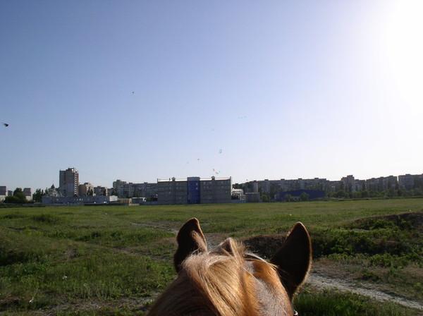 http://content.foto.mail.ru/mail/alexgrey7/132/i-125.jpg