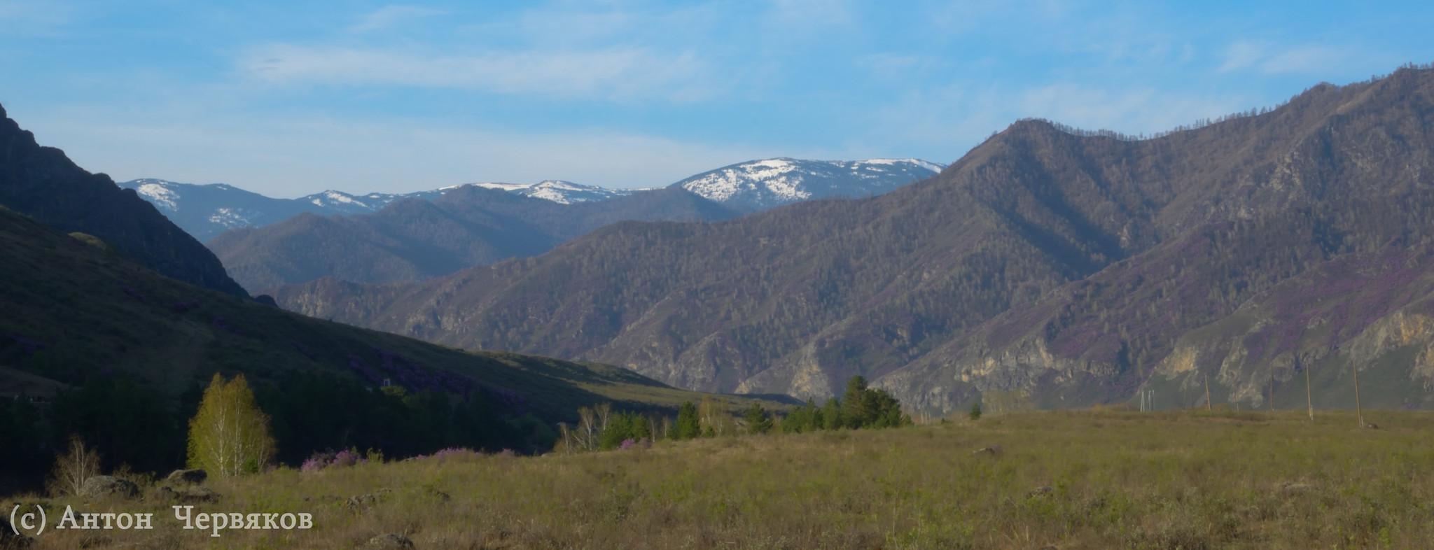В горах Алтая. Весна-2013