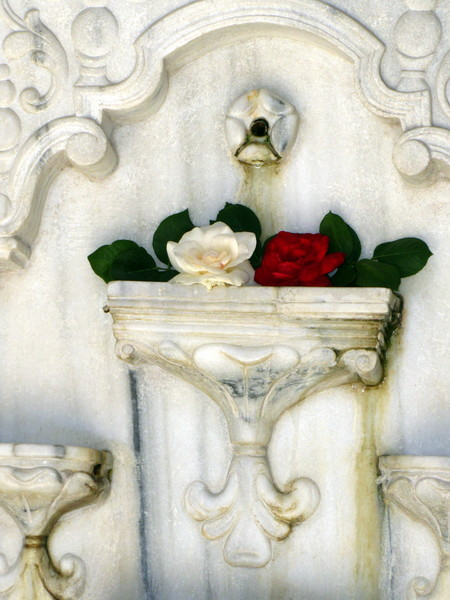 Розы на фонтане слез