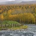 Осень на Камчатке пос Эссо