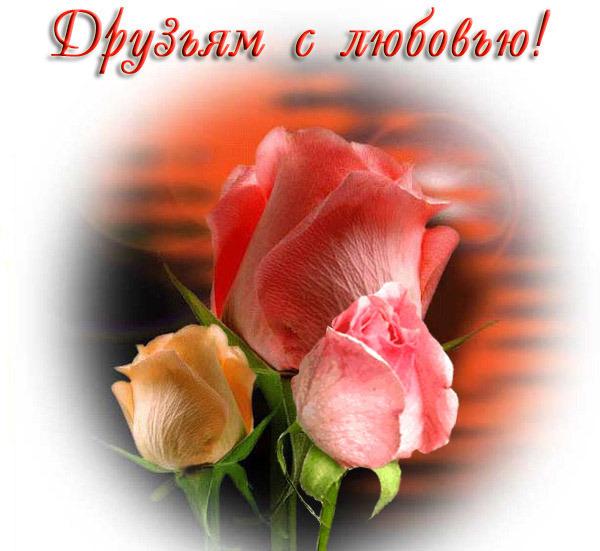 http://content.foto.mail.ru/mail/anna-sabina/_blogs/i-4703.jpg