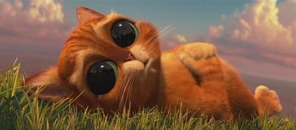 Доброе утро котик clickr
