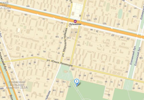 Карта места пикета