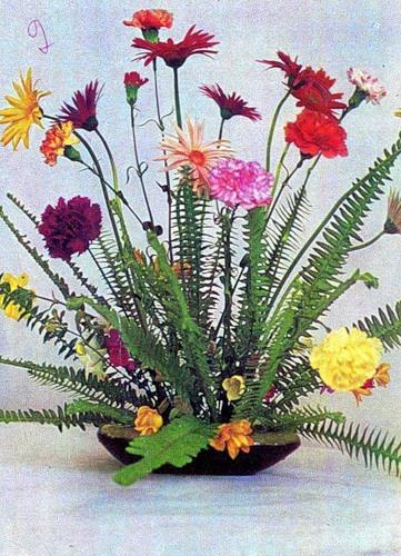 Обои цветы мимоза мимозы  раздел Цветы размер