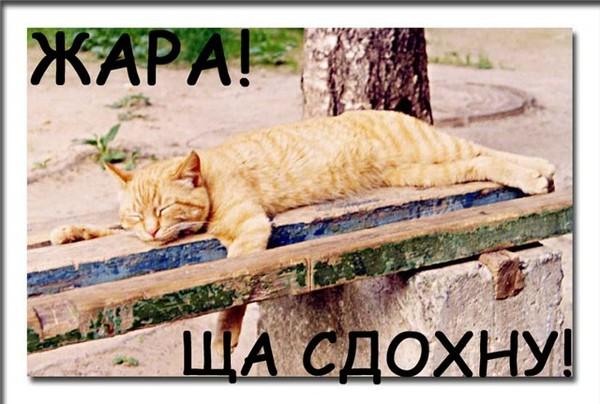 http://content.foto.mail.ru/mail/batista65/_blogs/i-602.jpg
