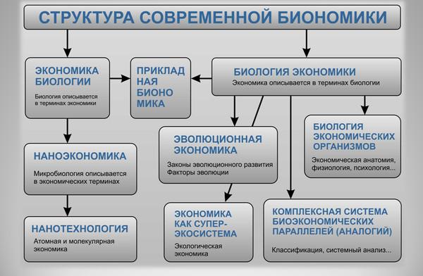 Рис. 9. Структура современной биономики по версии МИБ.