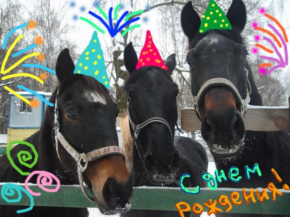Поздравление от лошадки