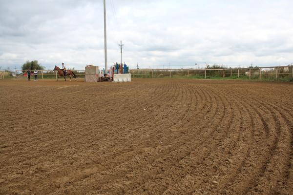 конкурный плац 50х55 (грунт песок). наши площадки для работы. выездковый плац 30х65 (грунт песок+щепа) .