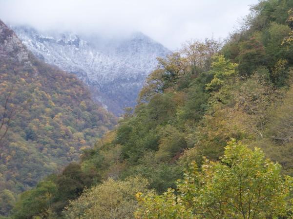 Долина Жоэквары