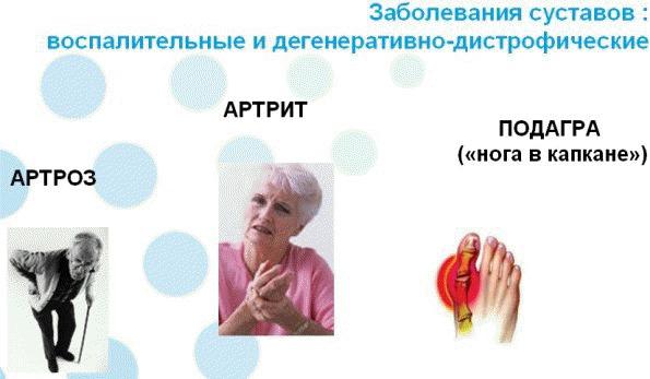 диетолог байкова отзывы